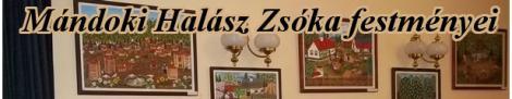 Mándoki Halász Zsóka Festményboltja - banner