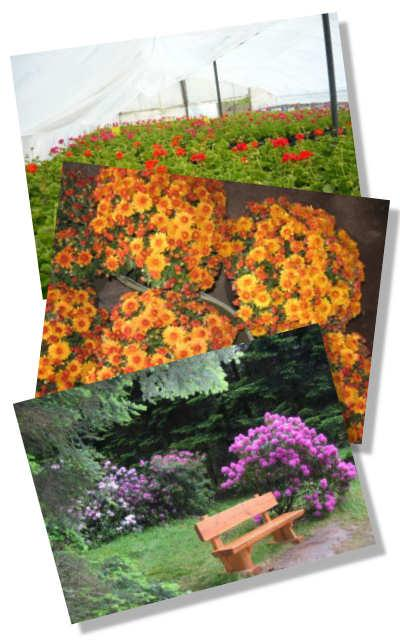 Kertészetek és park részlet