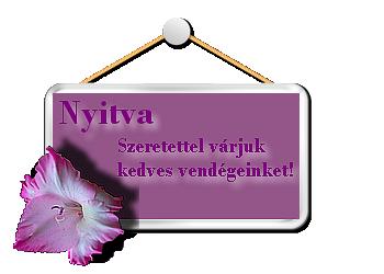 http://farkasandrea.lapunk.hu